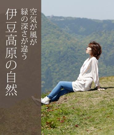 空気が風が緑の深さが違う 伊豆高原の自然