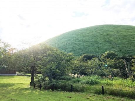 朝の大室山