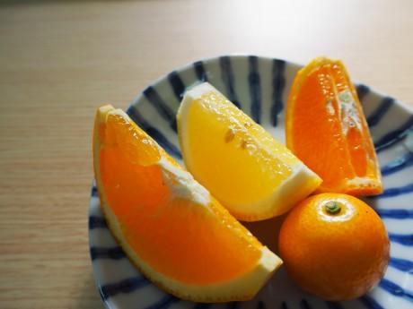 柑橘の盛り合わせ