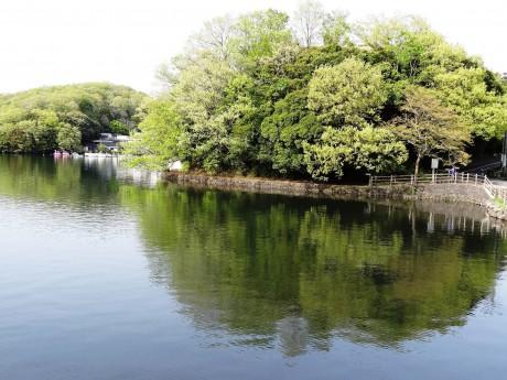 新緑の一碧湖