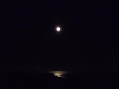 月明かりで照らされる海