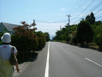伊豆急2 003.jpg