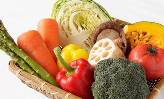 生命力あふれる有機栽培の野菜